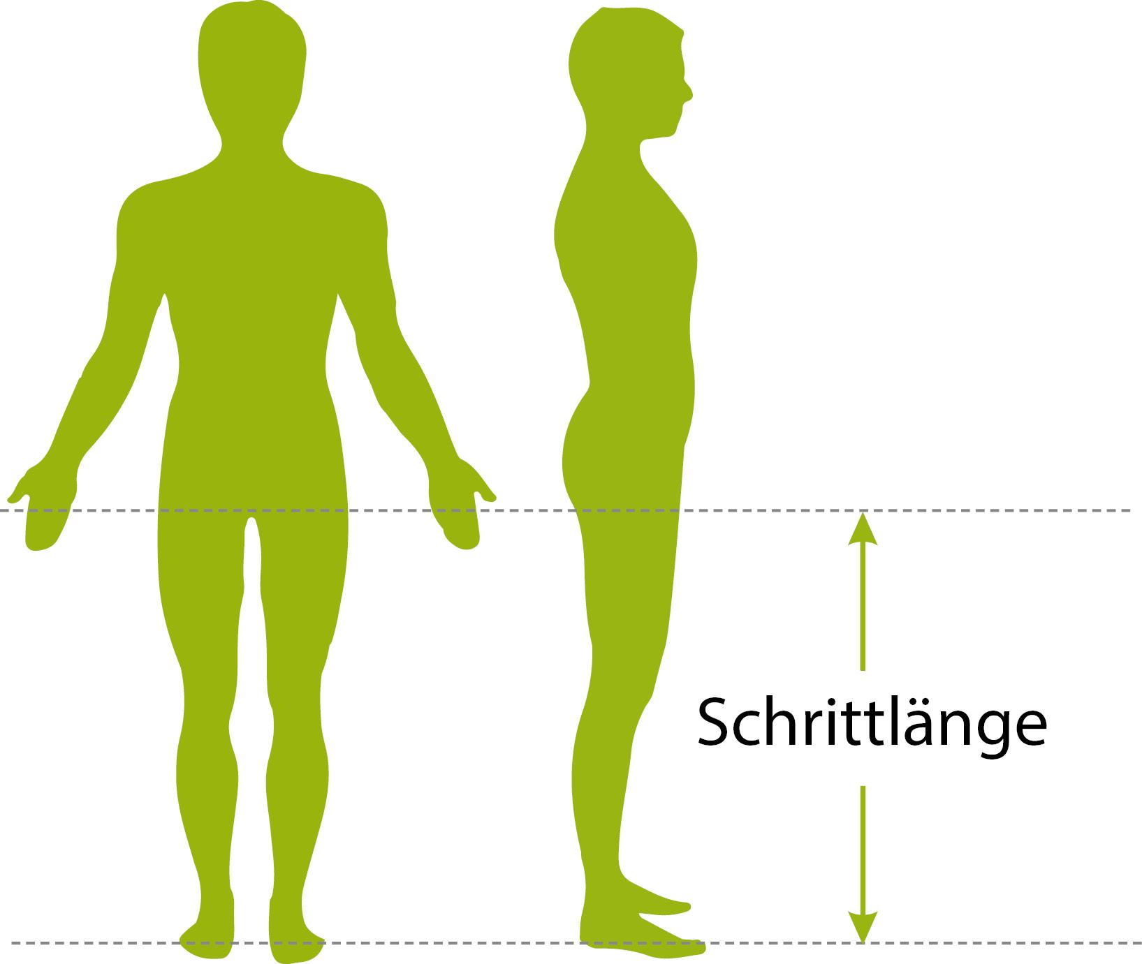 schrittl-nge-neu